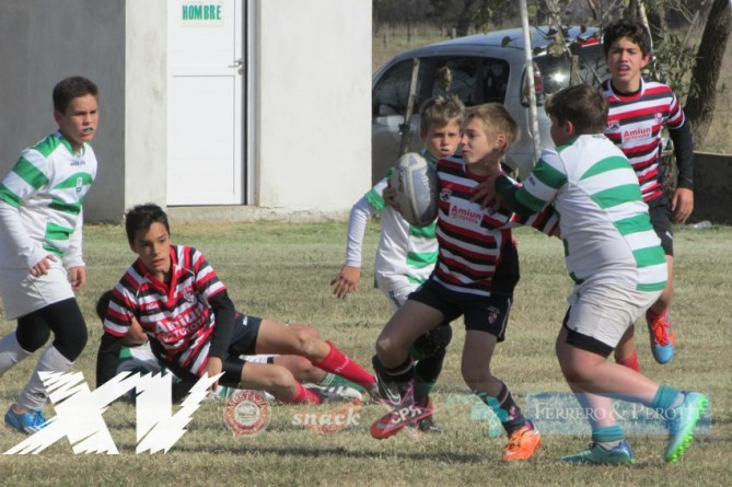 Infantiles-Rugby