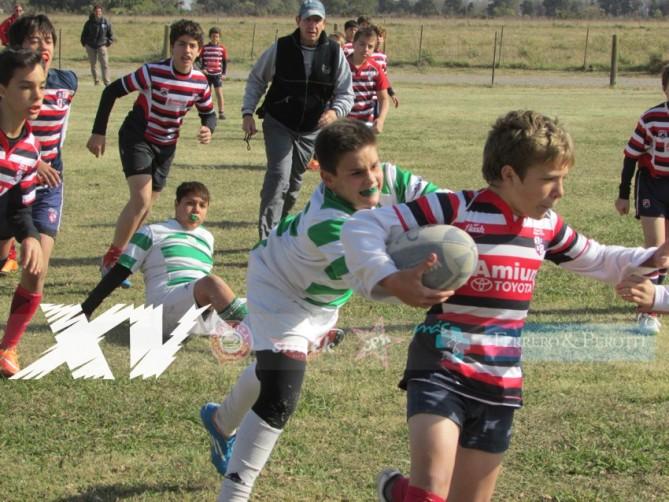 Rugby-Infantiles-CRAR-vs-SFRC
