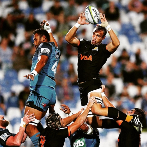 BluvJag.superRugby