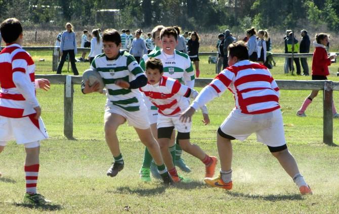 Infantiles-Rugby-CRAR